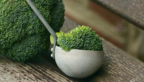Wer sich gesund mit einer vorwiegend pflanzlichen Kost ernährte, hatte in einer Studie ein geringeres Risiko, sich mit dem Corona-Virus zu infizieren.