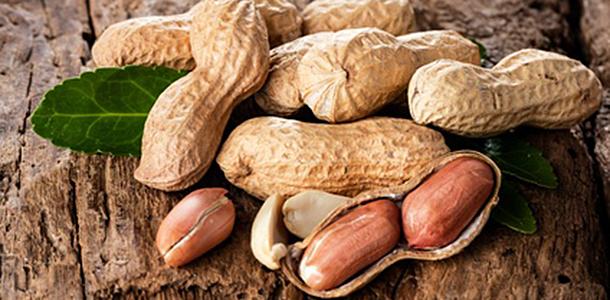 Australischen Forschern gelang es, Kinder mit einer Erdnussallergie von ihren Beschwerden zu heilen.