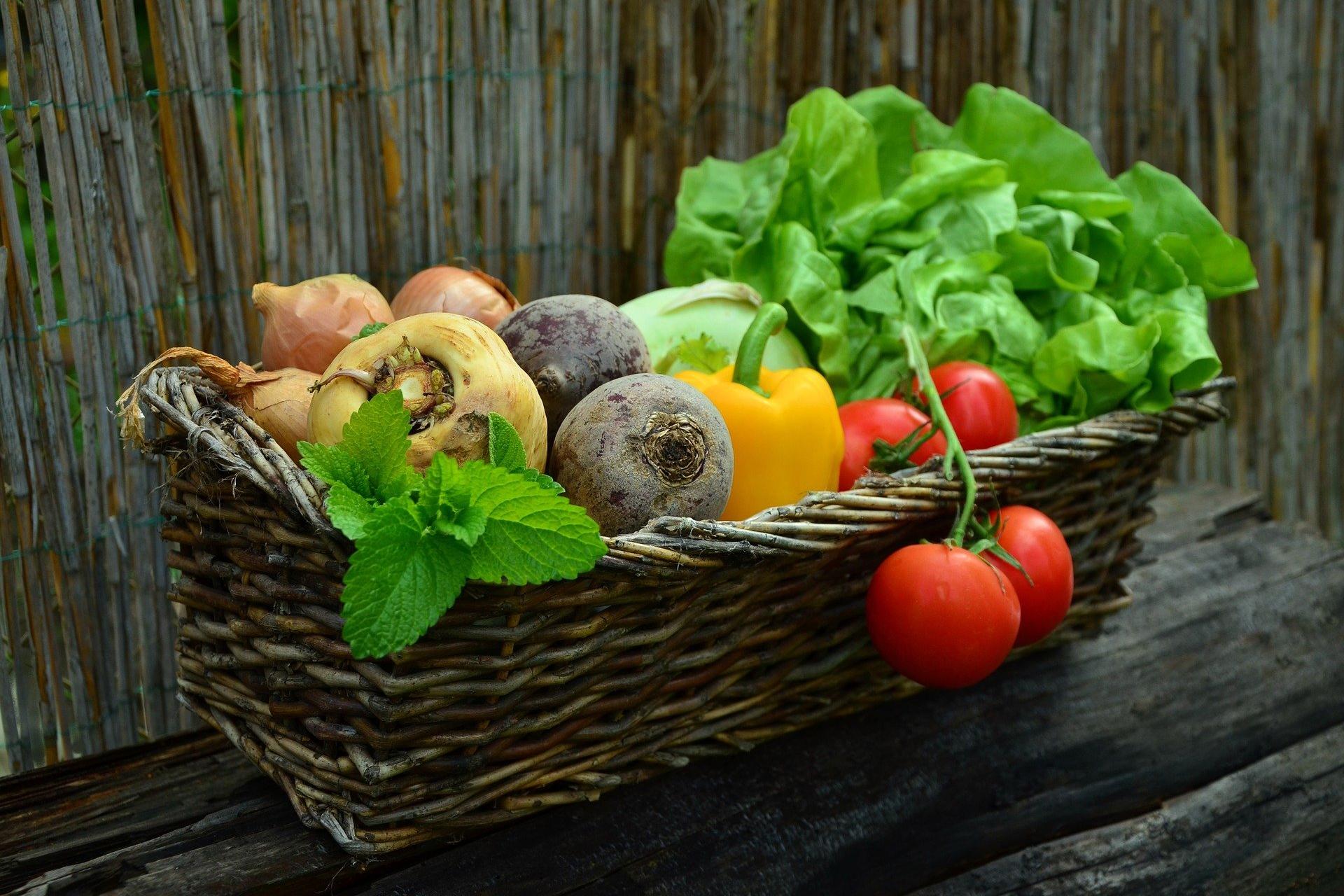 Bei jedem zweiten Deutschen fehlt es an genügend Kenntnissen über eine gesunde, ausgewogene Ernährung.