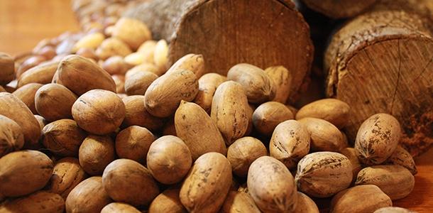 Neue Bedarfswerte für Zink und Vitamin B6