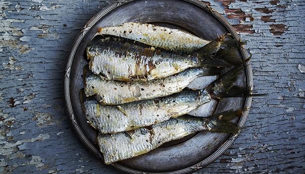 Sardinen enthalten u.a. reichlich Omega-3-Fettsäuren. Ihr regelmäßiger Verzehr trug in einer spanischen Studie zur Vorbeugung vor Diabetes bei.