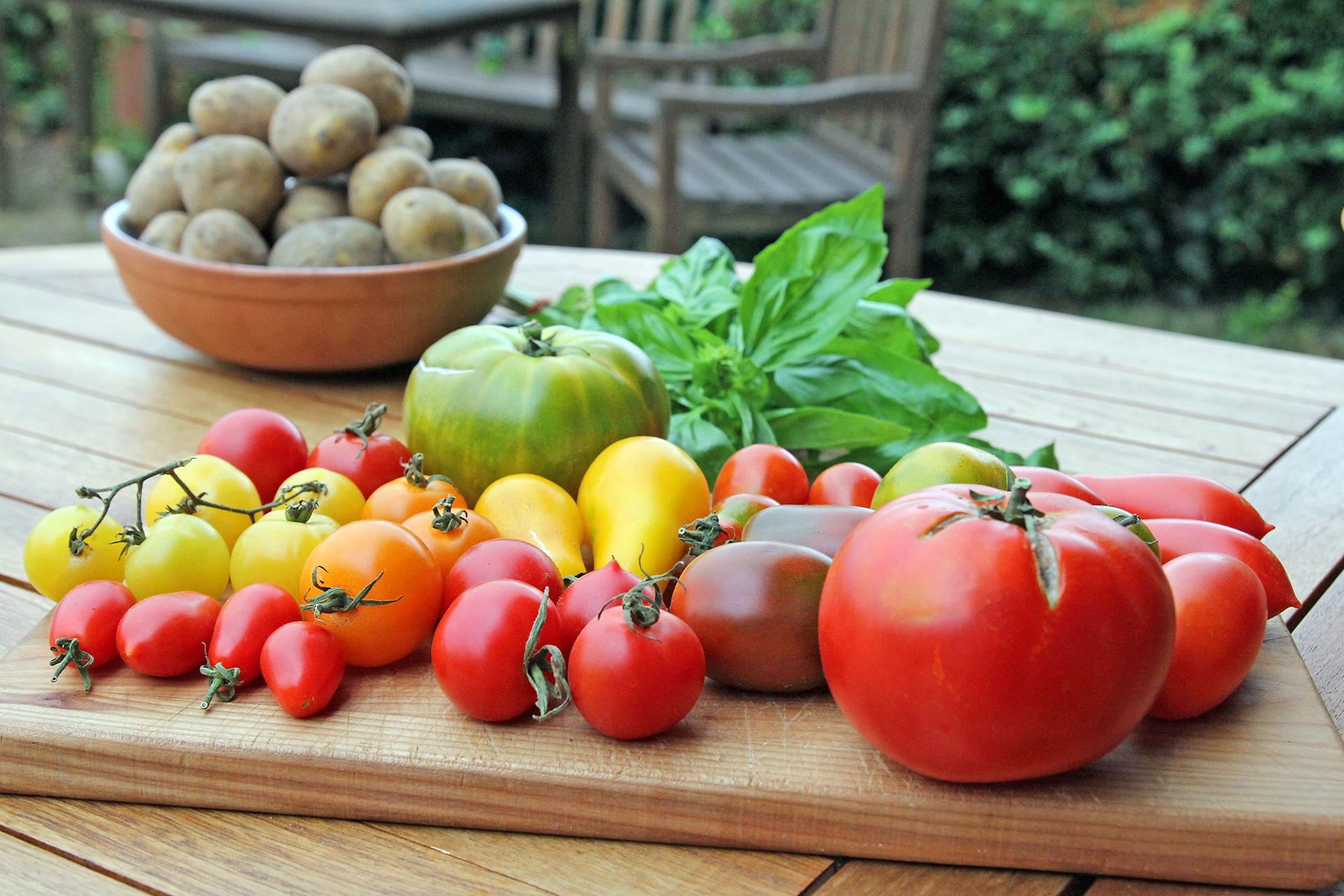 Die mediterrane Ernährung gilt als sehr gesund. Wie eine neue Studie zeigt, kann sie auch die Gesundheit der Knochen und Muskeln fördern.