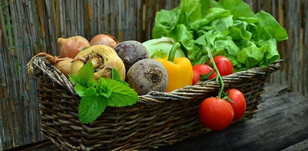 Die Unterversorgung mit Eisen gehört zu den am häufigsten vorkommenden Defiziten an Mikro-Nährstoffen. Pflanzliche Lebensmittel sind generell eine geringere Eisenquelle.